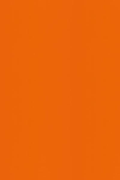 BT449橙色