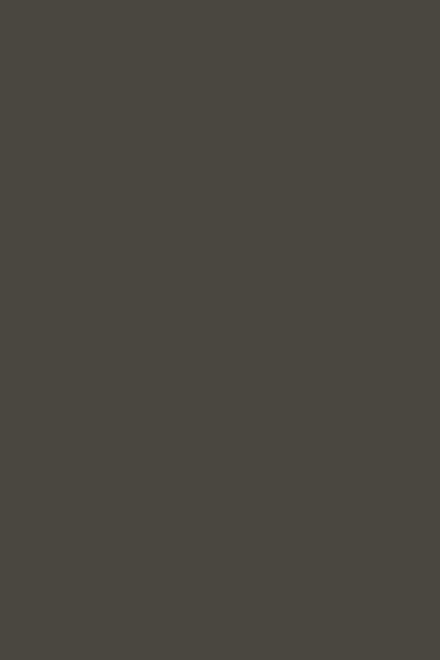 BT538蛤蜊灰