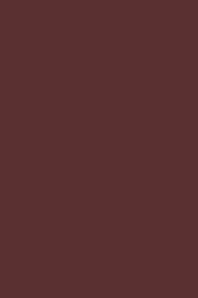 BT551珊瑚红